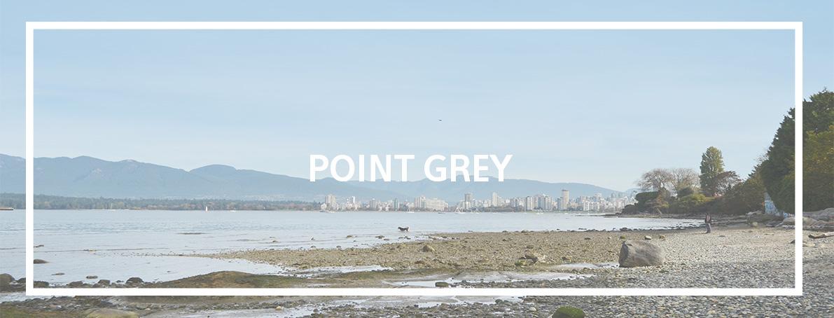 point grey2