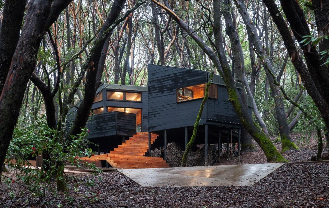 ignant architecture envelope architecture design forest house 04