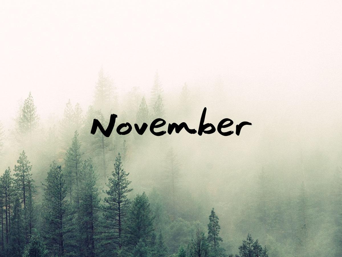 november 2015 b