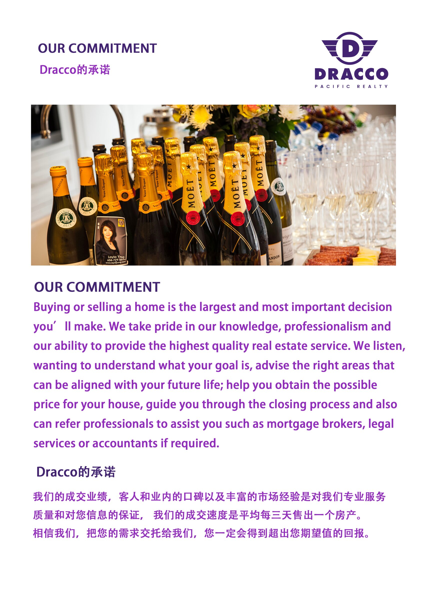 2020 dracco brochure 0011