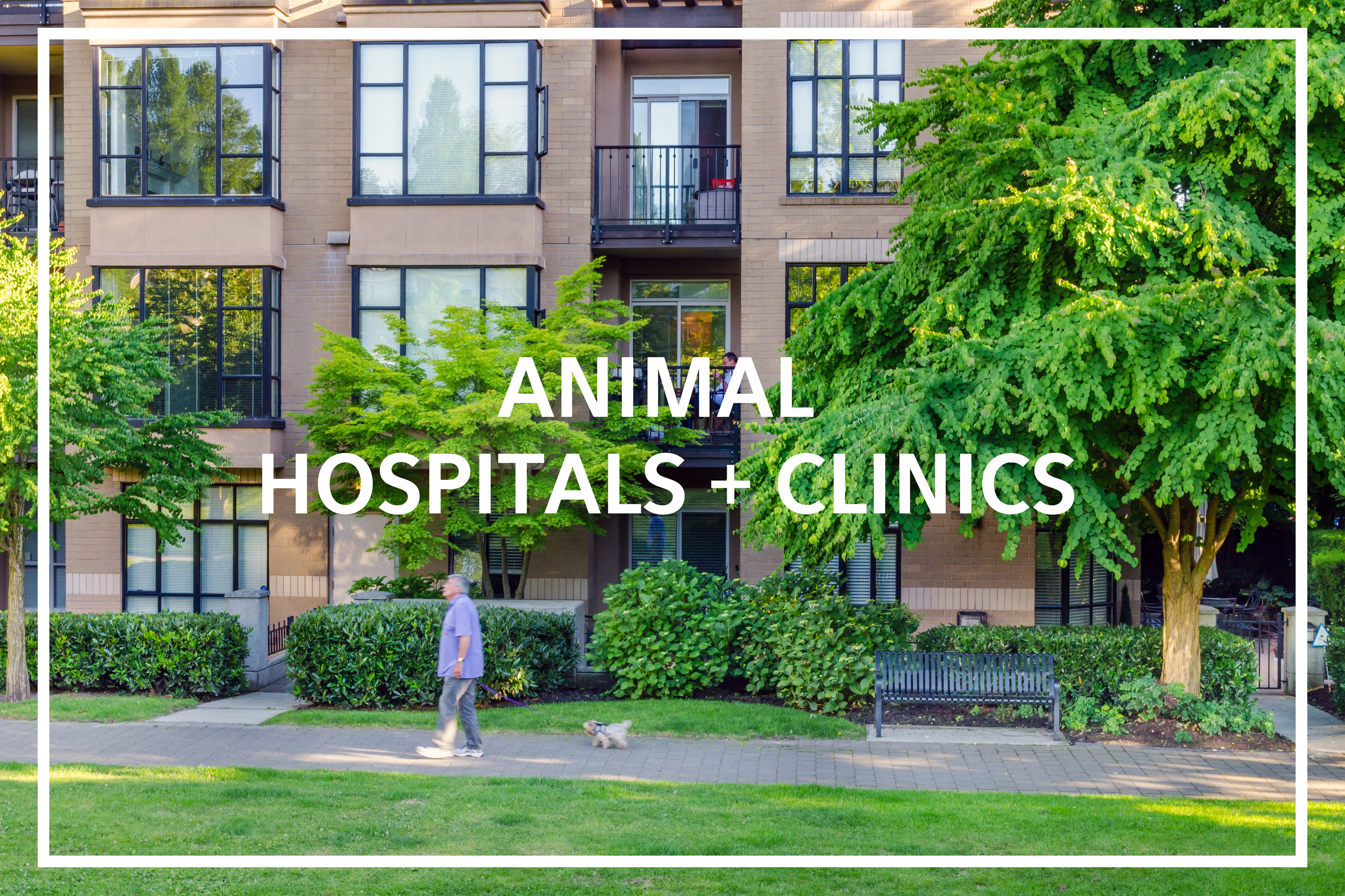animal clinics