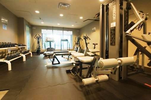 590 Nicola gym