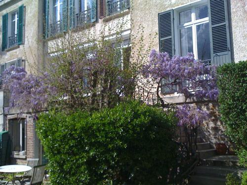 exterior-lilacs