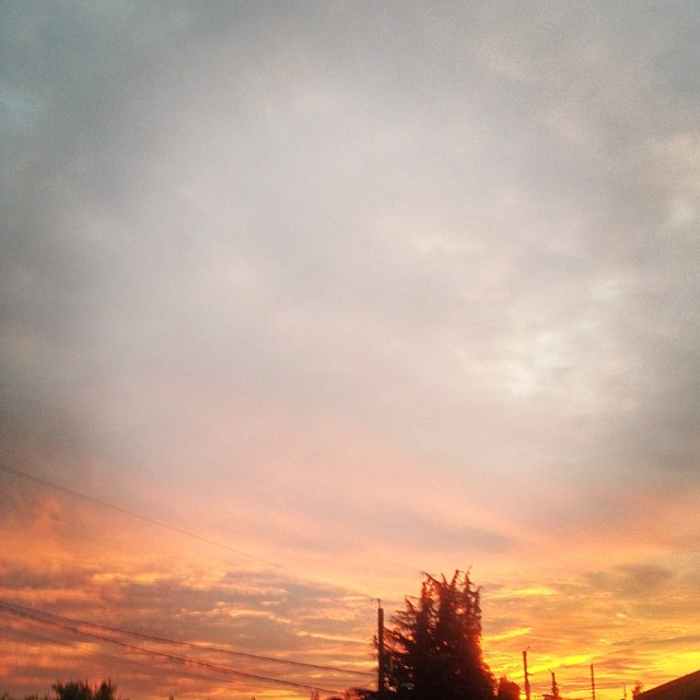 vancouver sunset vancouverisawesome igs photos igmasters allshots  amature united bd